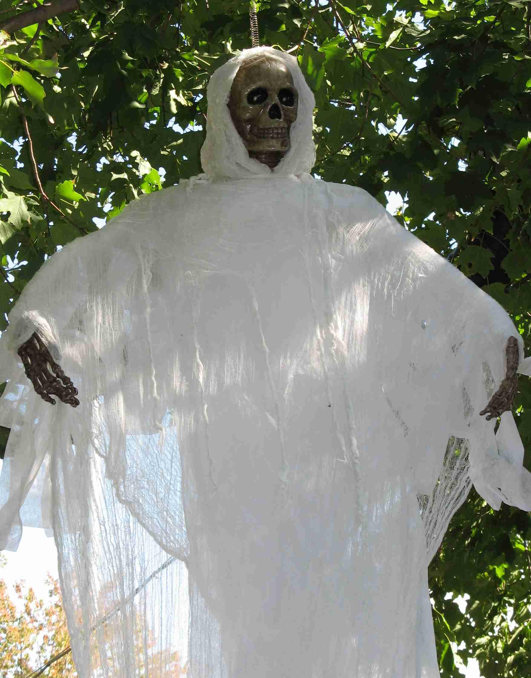 Skeleton III.jpg