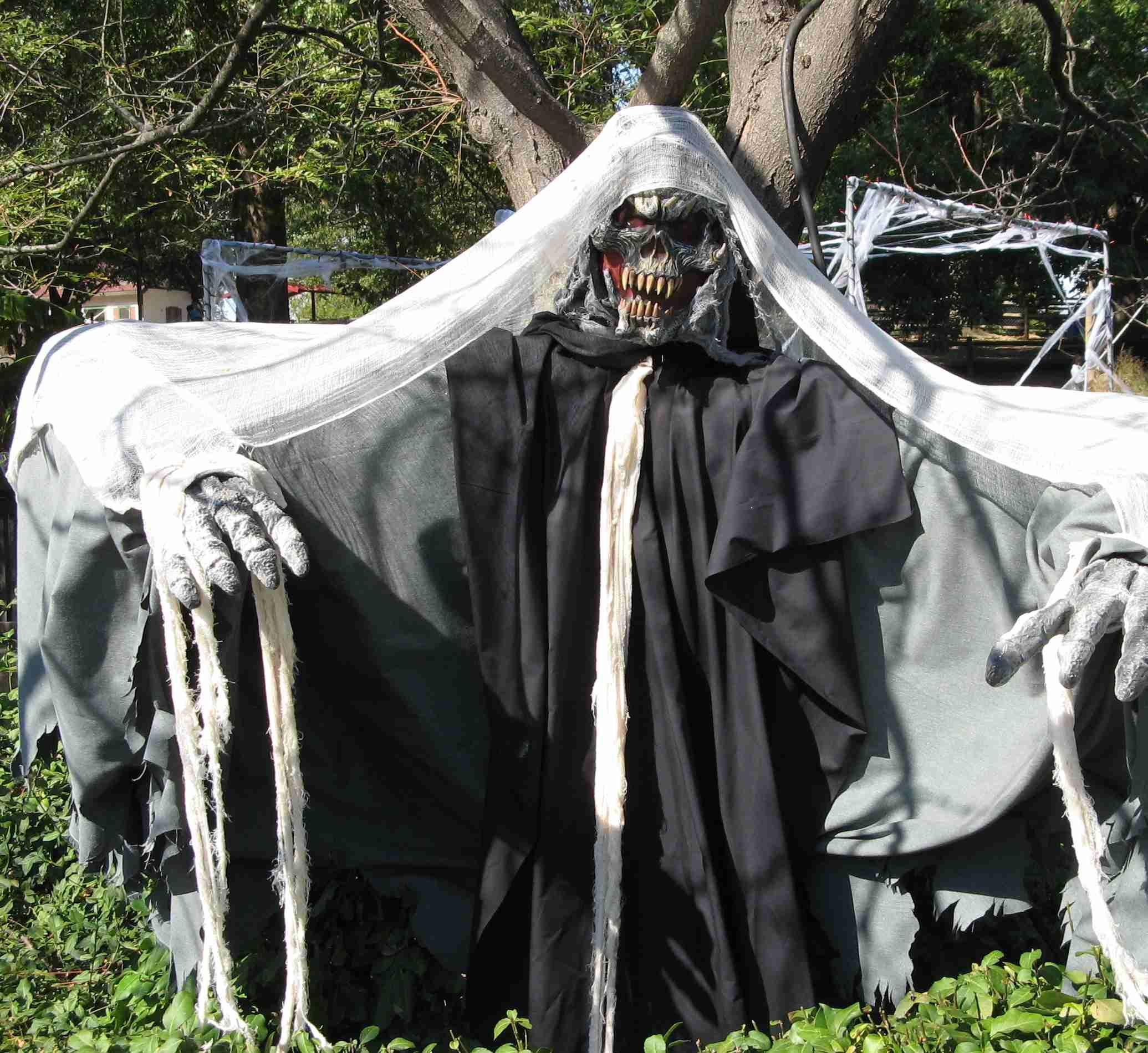 skeleton II.jpg
