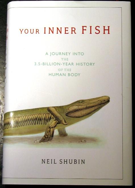 Explore your inner fish dangerous intersection for Neil shubin your inner fish