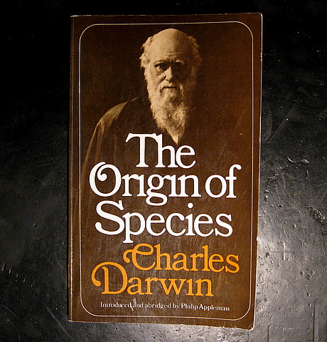 an analysis of charles darwins natural selection Darwin and natural selection charles darwin was an active poor and politically powerless people were thought to have been failures in the natural.