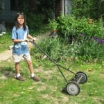 Consumer Report's blind spot re human-powered lawn mowers