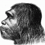 Your Neandertal Ancestors