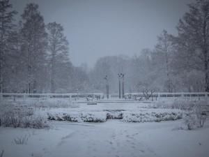 IMG_9319 Snow MBG - evv