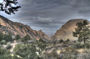 IMG_9160_1_2_tonemapped - low res