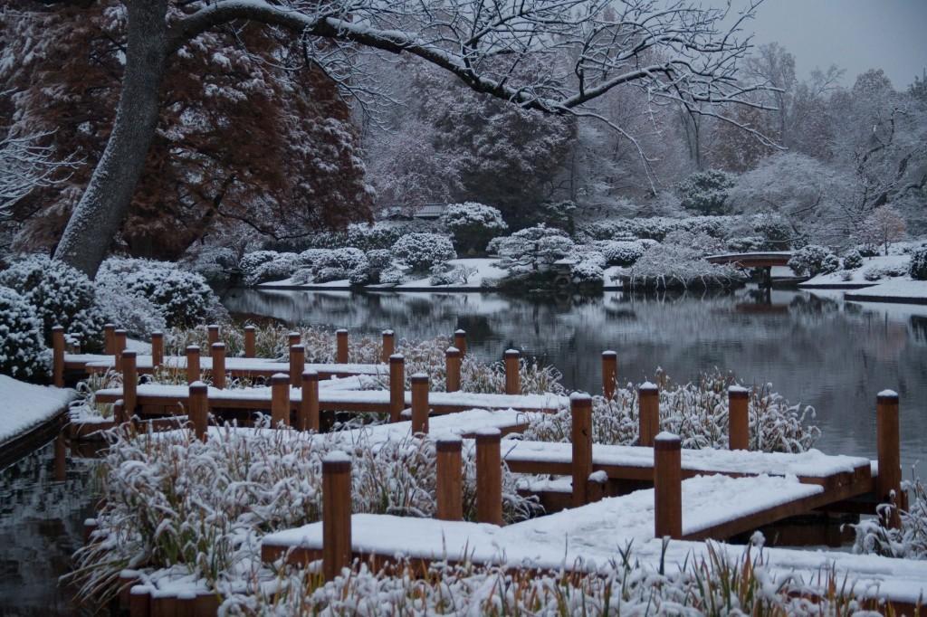IMG_1468 MBG Snow